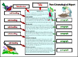 35 best non chronological report images on pinterest for Report writing template ks1
