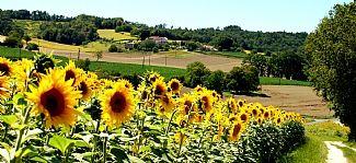 french farm house holidays .co.uk