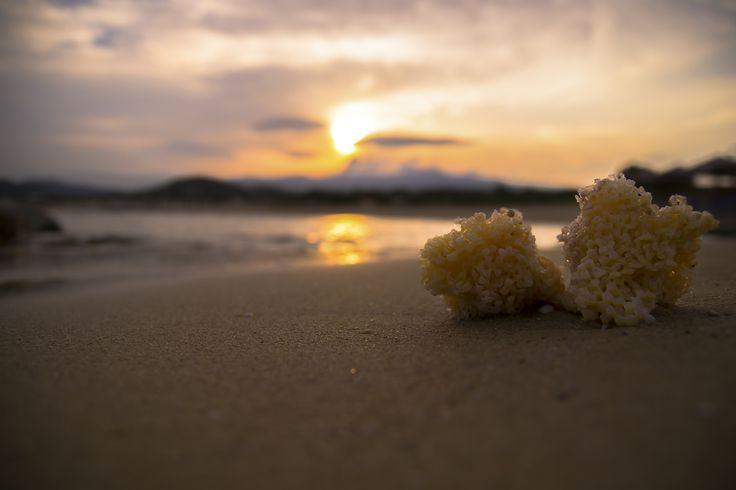 A beautful photo that i shot last summer ! I Love the beach !