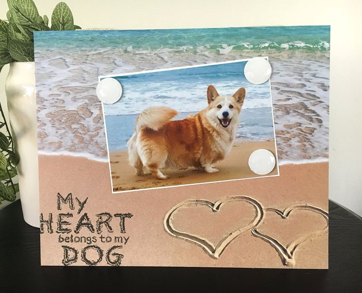 "My Heart Belongs to my Dog Doggy Beach Pup Paws Animal lover New Puppy gift home magnetic picture frame holds 5"" x 7"" photo 9"" x 11"" size"