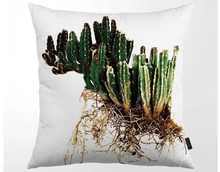 Kuddfodral Tropisk Kaktus, CLINTON FRIEDMAN