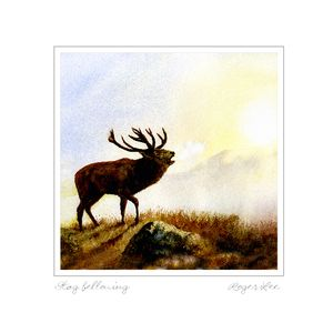 Stag Bellowing by wildlife artist Roger Lee