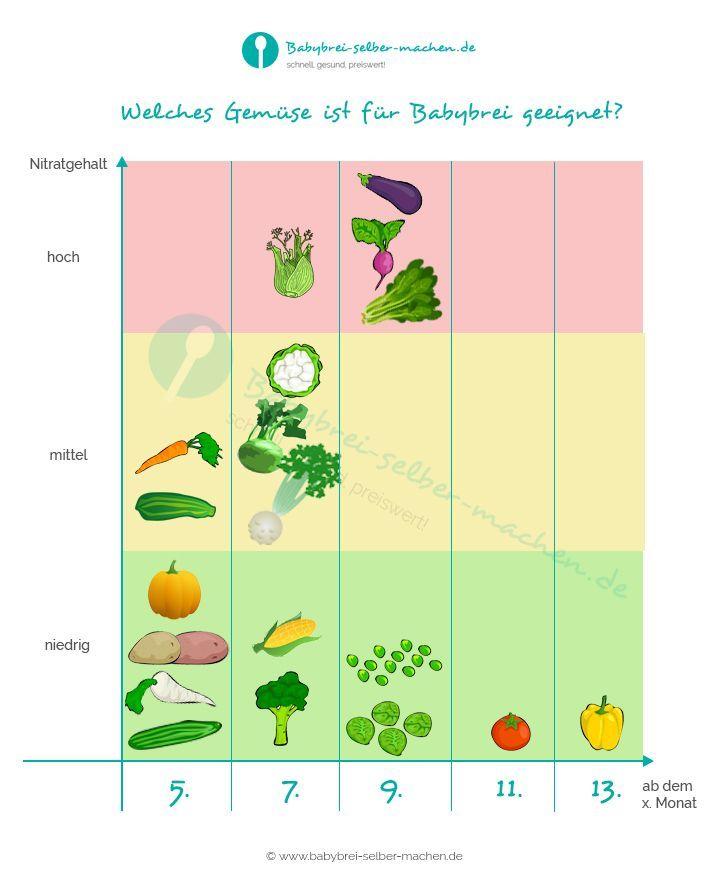 INFOGRAFIK: Welches Gemüse ist für Babys ab welchem Alter geeignet und welches Gemüse hat eigentlich einen hohen Nitratgehalt?