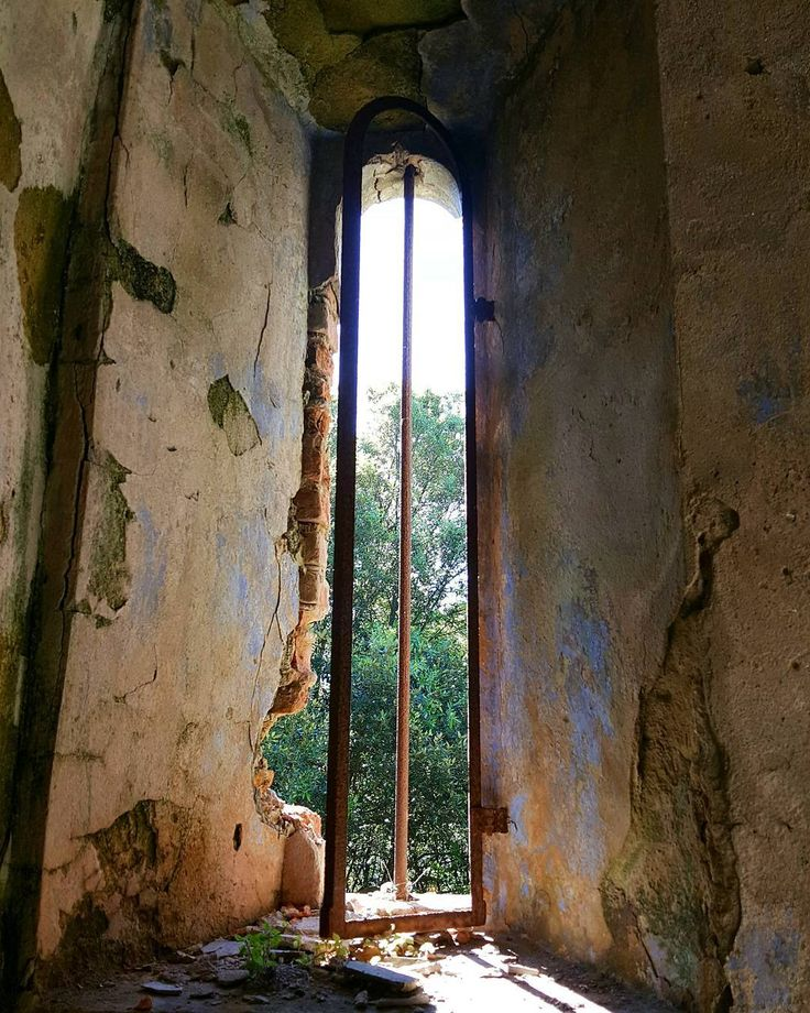 {Consumata dal tempo} Monte Pisano 22/05/2016 #italia #italy #abandoned #allabandoned #abandonedplaces #hiking #igerspisa #ig_pisa #aov #igersitalia #vivotoscana #loves_toscana #rsa_nature #nature #communityfirst #main_vision #igerstoscana #ig_sharepoint #italian_places #huntgramitaly #lookingforaframe #livefolk #ig_italia #volgotoscana #ig_italy #instaitalia #exklusive_shot #whatitalyis #ig_masters #ig_worldclub by federico_controni