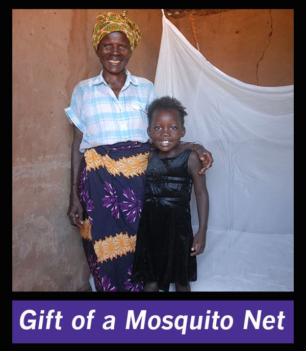 A simple insecticide-treated net can protect children and families from a needless, preventable death. Your gift provides for the distribution of nets and vital training in how to effectively use them, how to recognize symptoms of malaria and when to seek treatment. Purchase a mosquito net here: http://www.episcopalrelief.org/what-you-can-do/gifts-for-life/health-and-wellness/mosquito-nets-and-training