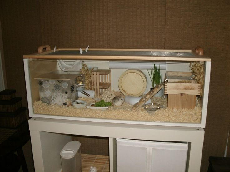 This is an ikea cage all they are is an ikea shelf tipped for Ikea hamster cage