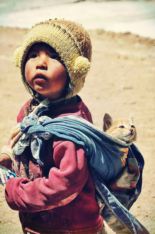 Human spirit.  Bolivian child with cat in baby sling .  Despite extreme poverty in areas the children and people of Bolivia live joyfully.