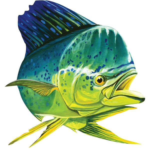Mahi Mahi Dolphinfish Deep Sea Fishing Wall Decal | Mahi ...