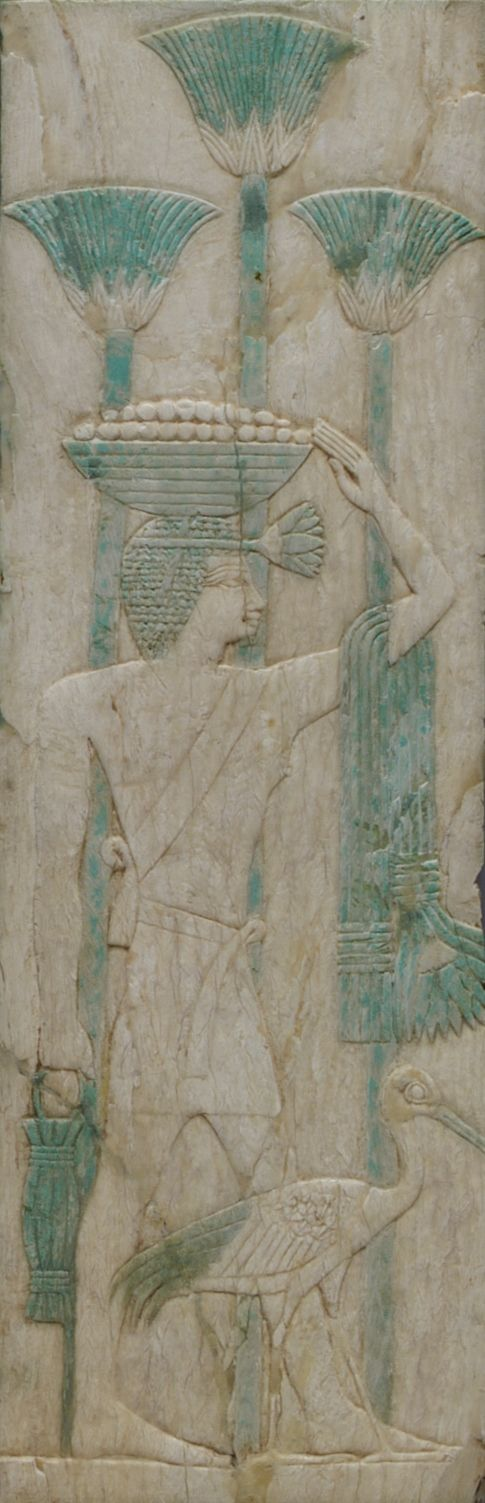 A male offering bearer carries a basket, stalks, and a vessel. Papyrus stalks decorate the wall. A larger-than-life Ibis leads the way. source unknown