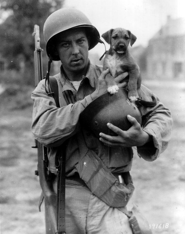 Man and man's best friend at a rare peaceful moment at the front, Normandy, summer 1944. The GI has also collected a German helmet. He carries the standard issue M1 Garand rifle and an ammo bandolier. I wish I knew what happened to both of them.