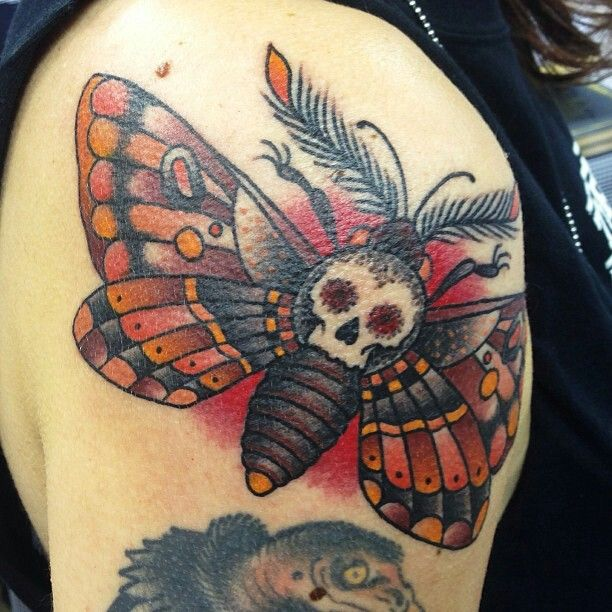 death head moth dan smith tattoo tattoos ideas pinterest traditional dan smith and skulls. Black Bedroom Furniture Sets. Home Design Ideas