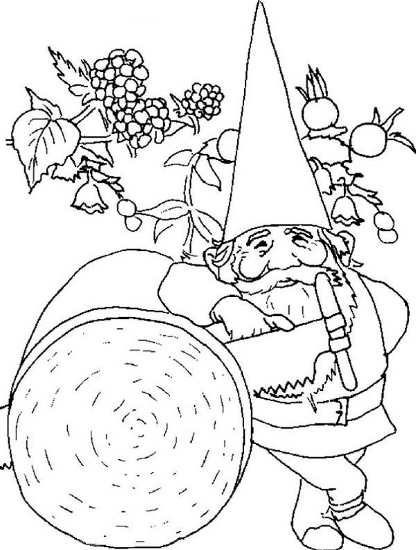99 best images about lineart gnomes on pinterest for Coloring pages gnomes