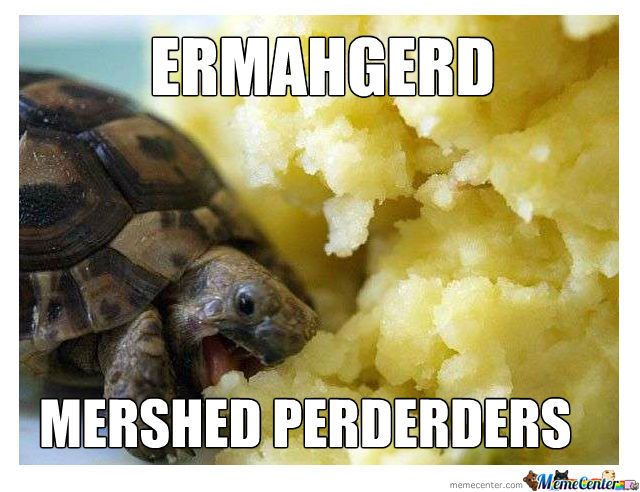 ERMAHGERD hahahaha: Funny Things, Mashed Potatoes, Turtles Eating, Funny Stuff, Nom Nom, Mersh Perderd, Eating Mashed, Baby Turtles, Animal