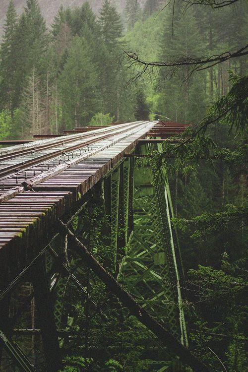 Rail Trestle, Washington photo via sheryl.: