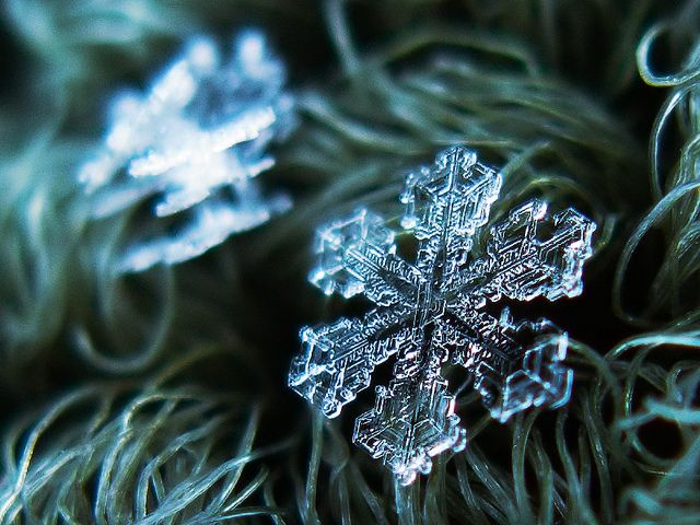 How to Take a Picture of a Single, Ultra-Magnified Snow Flake - Megan Garber - The Atlantic