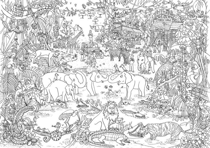 JUNGLE Let's Color! Adult coloring pages, Artists for