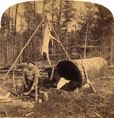 Deer Hunter Living In A Log , 1893.: