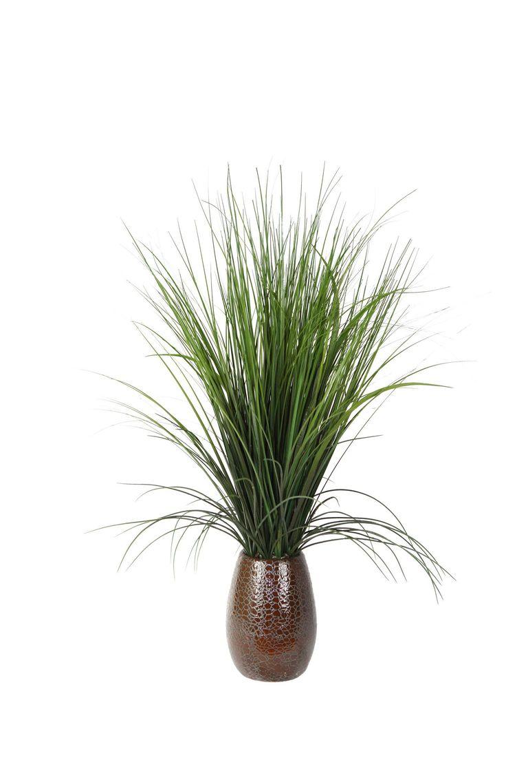 "28"" Onion Grass with Plastic Grass in Ceramic Pot"