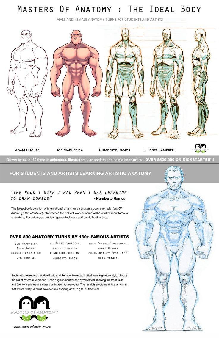 Master In Anatomy