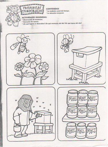 Ciclo de la miel