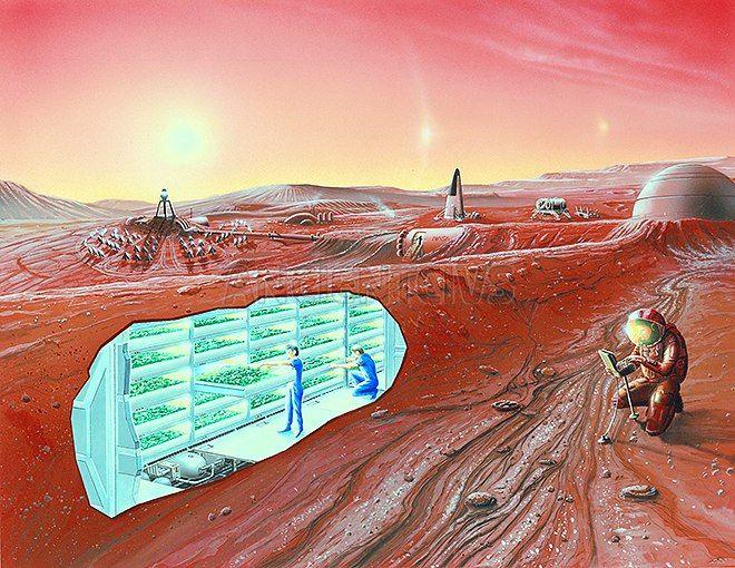 Ученые выясняют, получится ли на Марсе выращивать растения?  Находящаяся во Флориде лаборатория технологического института станет «марсианским садом»  #Марс #марсианская_ферма #марсианский_грунт #Красная_планета #колонизация_Марса #марсоход #НАСА #марсианское_поселение  http://ancientcivs.ru/mars_plants