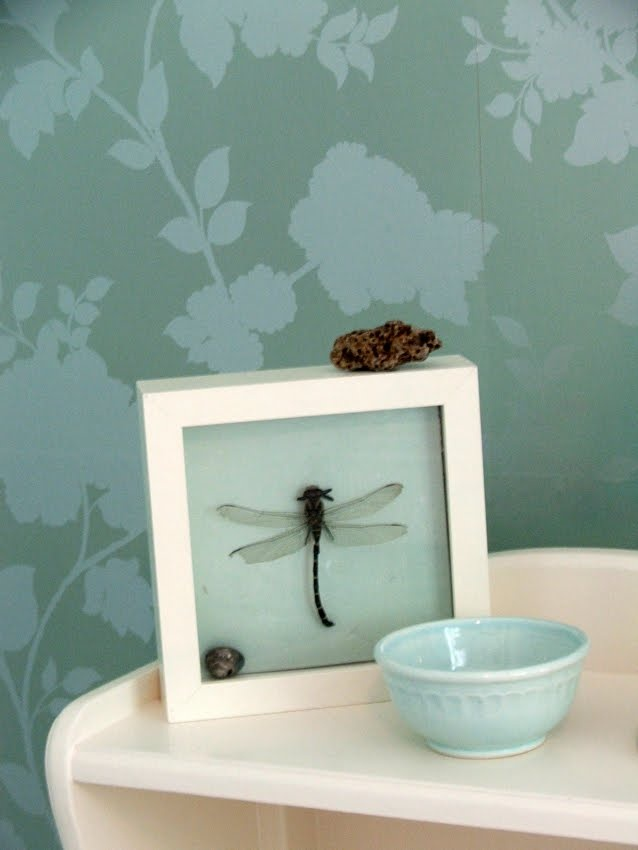 Dragonfly in picture frame