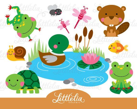 Pond Friend Clipart Frog And Turtle Clipart Pond Animal Etsy Pond Animals Clip Art Kids Art Projects