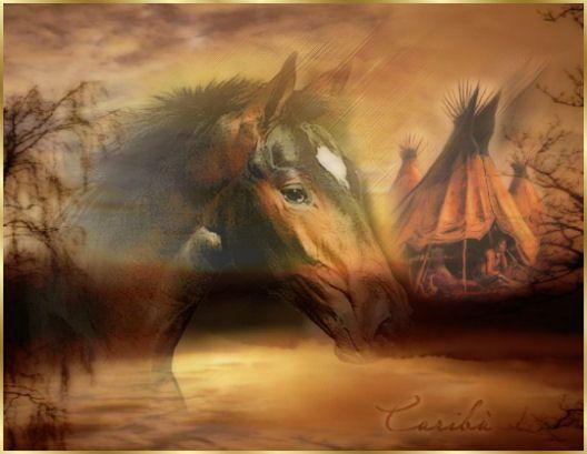 Il Gufo Su Indiani D America: Cavalli Selvaggi Americani Al Galoppo