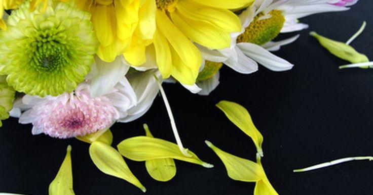 Ideias de banner para chá de panela. Um chá de panela é um evento em que a noiva se reúne com amigas e familiares. Geralmente, ela recebe incontáveis presentes, como um desejo de uma ótima vida conjugal. A festa é decorada, normalmente, por itens como fotos da famílias, buquês e até um banner.