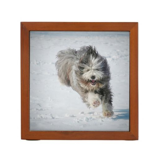 Keep your desk tidy with a customized desk organizer! Bearded collie running in the snow