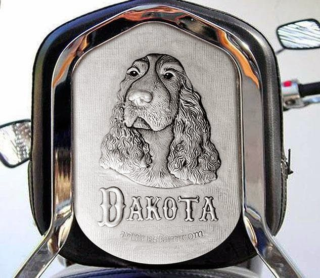 ArteyMetal: Respaldo moto custom (Dakota)