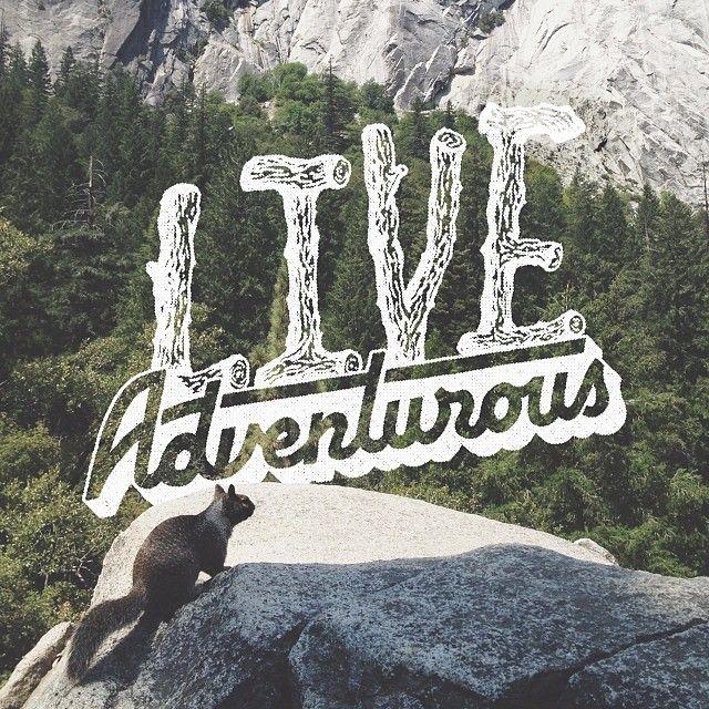 Best 25+ Life Is An Adventure Ideas On Pinterest