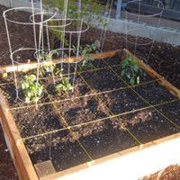 The Square Foot Gardening Guide at Ideal Home Garden