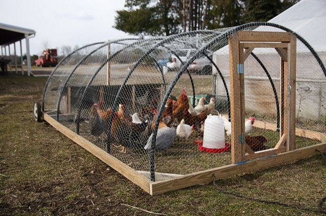 """chicken tractor, hoop style 