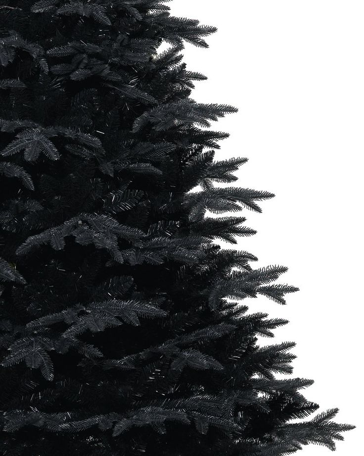 Midnight Black Christmas Tree | Treetopia