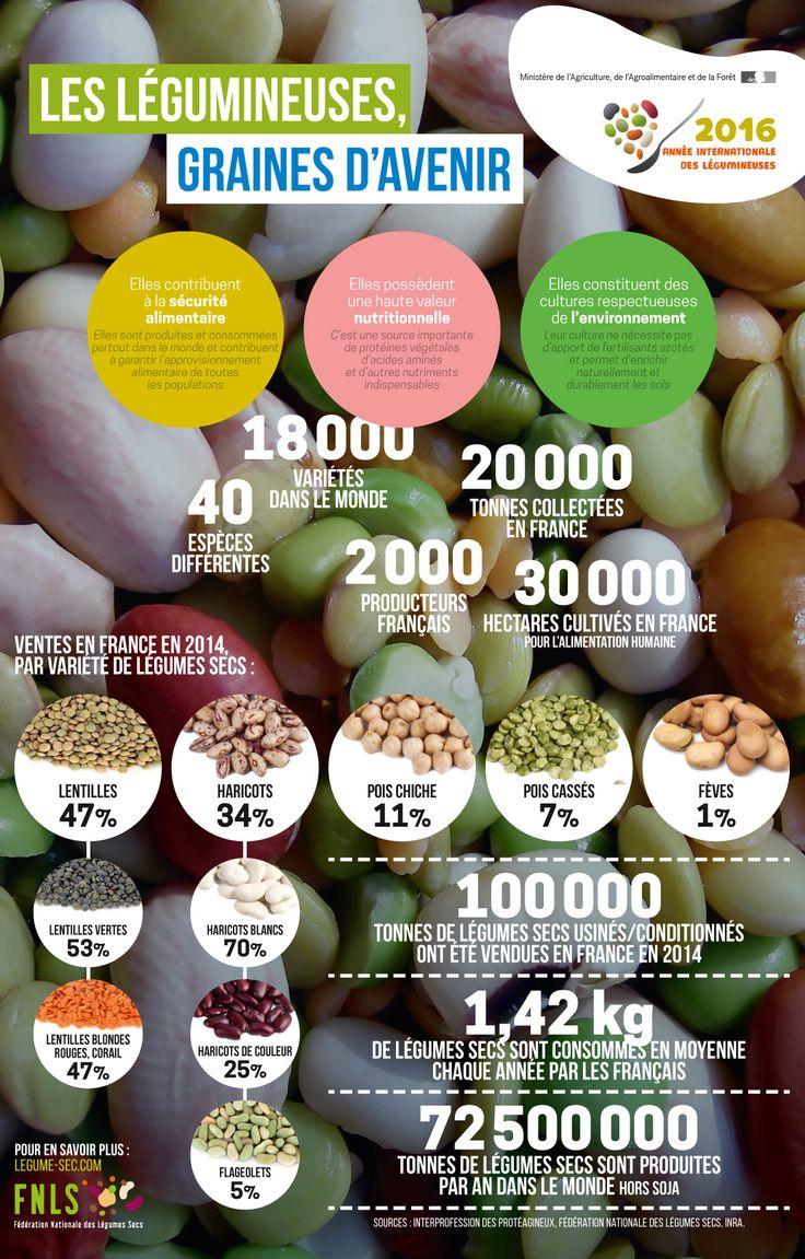 Légumineuses, graines d'avenir par la #FNLS (Fédération Nationale du Légume Sec)   #AIL2016 #IYP2016 #pulses #nutrition