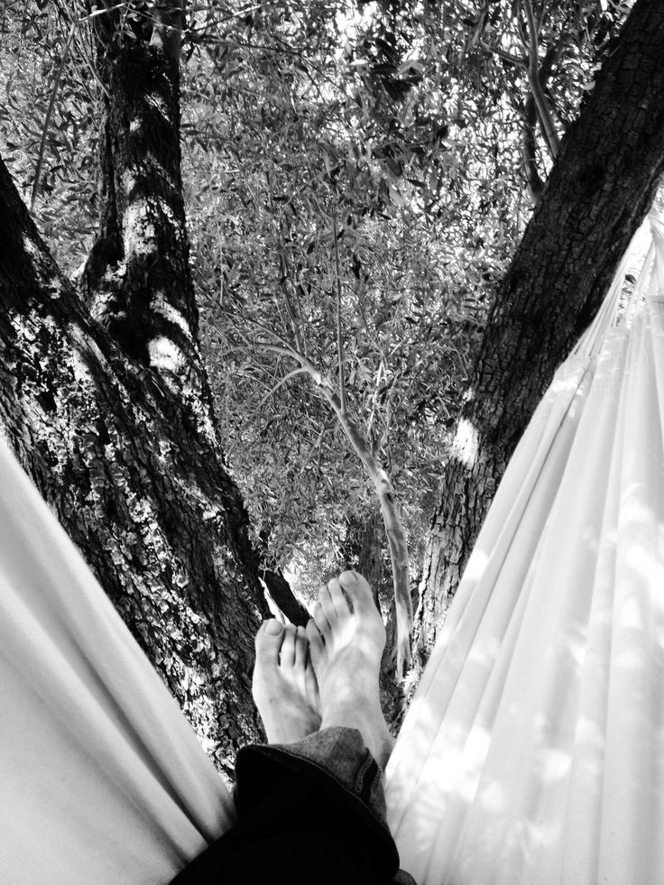Nap under the olive trees in hammock at DarZahia's garden.