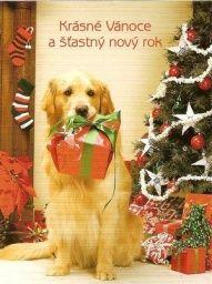 Pohlednice - Vánoce, vánoce přicházejí......