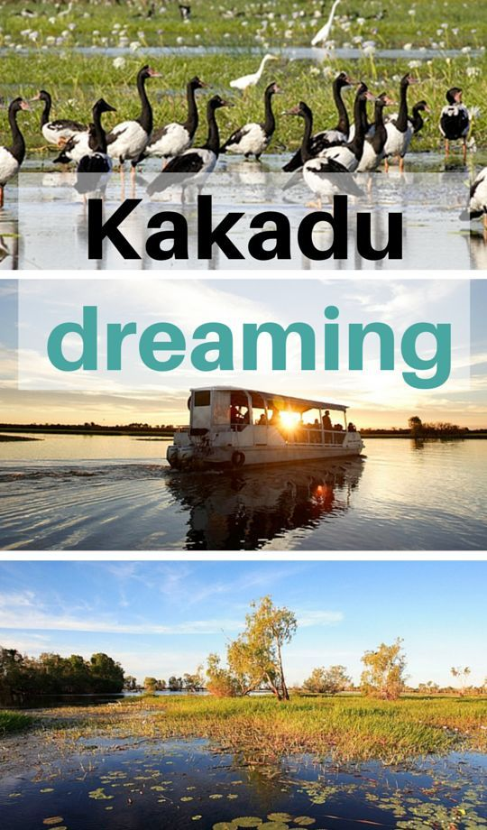 Dreaming of a trip to the Kakadu National Park, Northern Territory, Australia