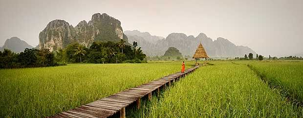 Rui Camilo, Spiritual Utopia III, 2014 / 2015 © www.lumas.com/ #Lumas -  #Asia #Asian #Bridge #Buddhism #Buddhist #Buddhists #contemplative #documentary #Faith #green #Horizon #Idyll #idyllic #Landscape #Laos #Man Meditation meditative Monk #Monks #Panorama #Path #Peace #People #Photography #Prayer #Religion #Religions #religous #Silence #Spirituality #spiritually #Tree #Trees #Water Z#en