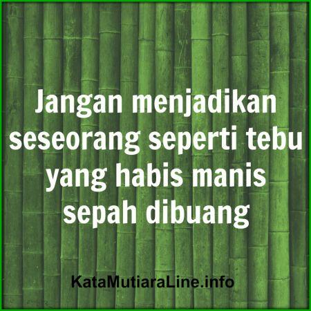 "Kata Mutiara KataMutiaraLine - ""Jangan menjadikan seseorang seperti tebu yang habis manis sepah dibuang"" #katamutiara #kata_mutiara #katamutiaraline #crewz #vja0041t #semangat #katasemangat #inspirasi #katainspirasi #pencerahan #katapencerahan #motivasi #katamotivasi #kehidupan #katakehidupan #sindiran #katasindiran #bijaksana #katabijak #nasehatbijak #katareligius"