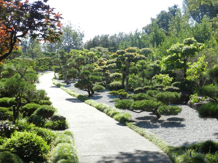 Japanese Gardens - Hayward, California