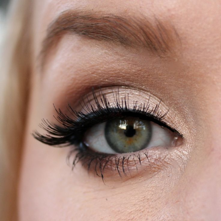 'Simply' Idea Gallery look by Maddeelenee using Makeup Geek's Creme Brûlée, Mocha, and Shimma Shimma eyeshadows.