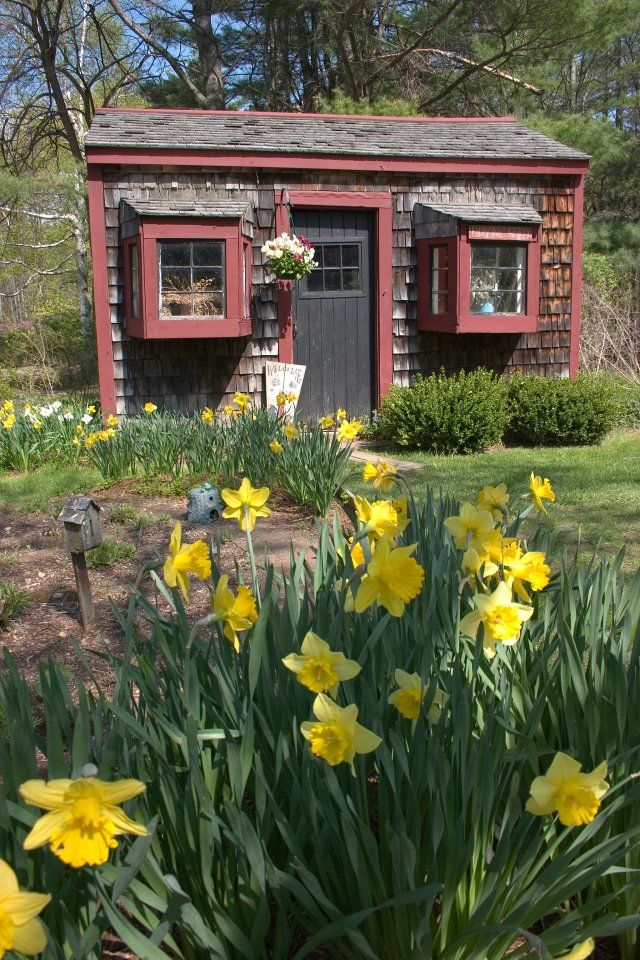 17 Best Images About Garden Sheds On Pinterest Gardens
