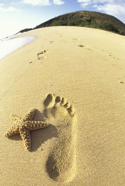 """""""Footprint and starfish in sand"""" Picture art prints and posters by Danita Delimont - ARTFLAKES.COM"""