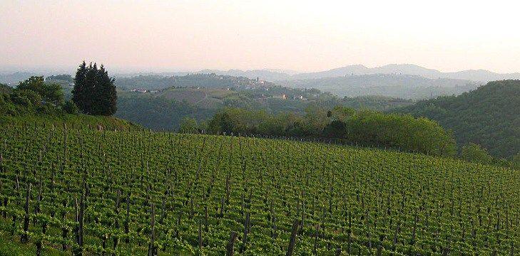 vinjournalen.se -  Vin Fakta : Sloveniens stora viner |  Slovenien gränsar till Italien, Österrike, Ungern och Kroatien. Beläget mellan Alperna och Adriatiska havet, är Slovenien det enda landet i Europa som påverkas av både kontinentala och alpina förhållanden. Vinodlarna har därför inspirerats av vinkulturen i dessa länder. Historia och klimat Tot... http://wp.me/p73gTR-31A