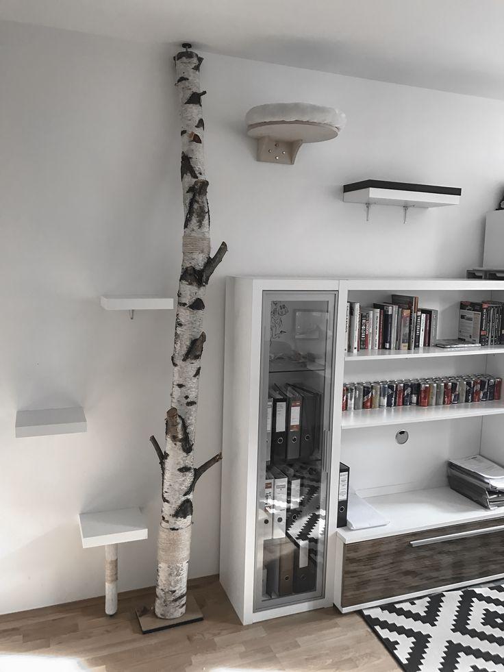 DIY Kratzbaum aus bzw. mit einer Birke – Auf der Website findest du die Anleitung und die verwendeten Materialien für den Bau dieses Kratzbaums. – Nadine Balzer