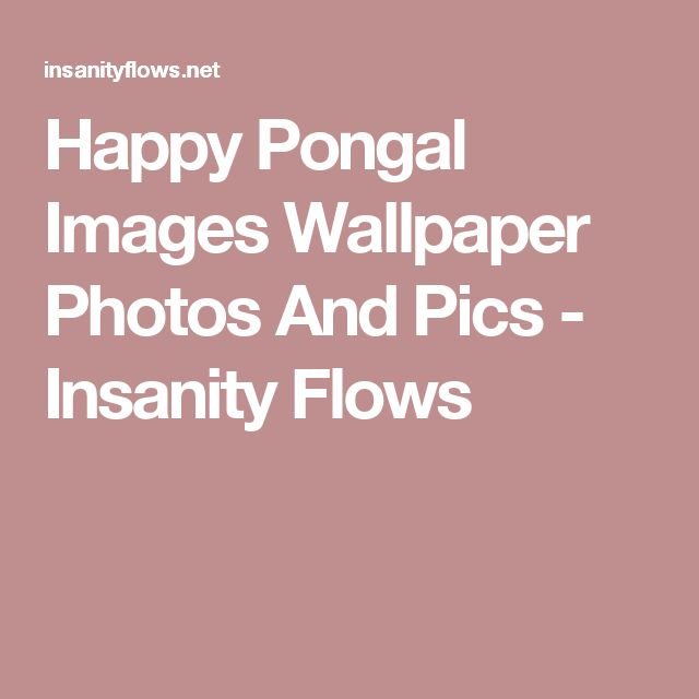 Happy Pongal Images Wallpaper Photos And Pics - Insanity Flows