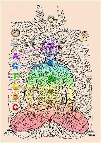 """Les NADIS – mot d'origine Sanscrite – sont des canaux énergétiques dans lesquels circule le """"Prâna"""" (ou Énergie Vitale) selon des règles très complexes, tenant compte des heures, des mouvements solaire et lunaire et de l'état particulier de chaque être humain."""
