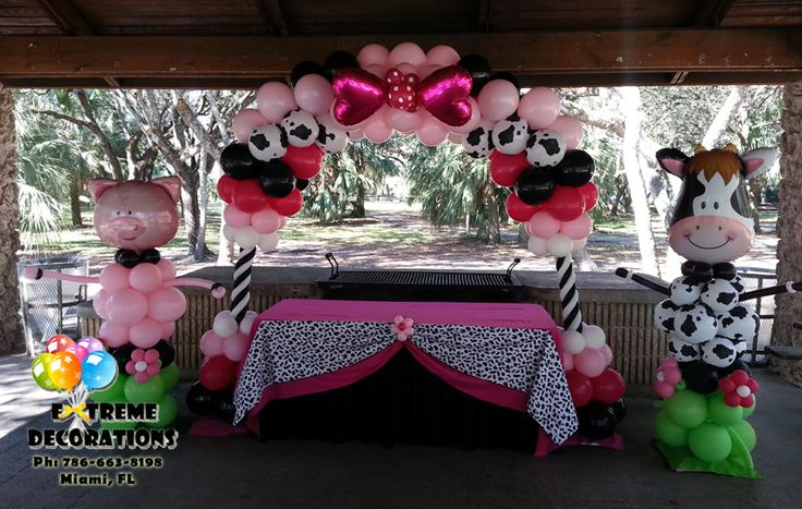 Girly Barn Kids Party Decoration Cake Table Decoration